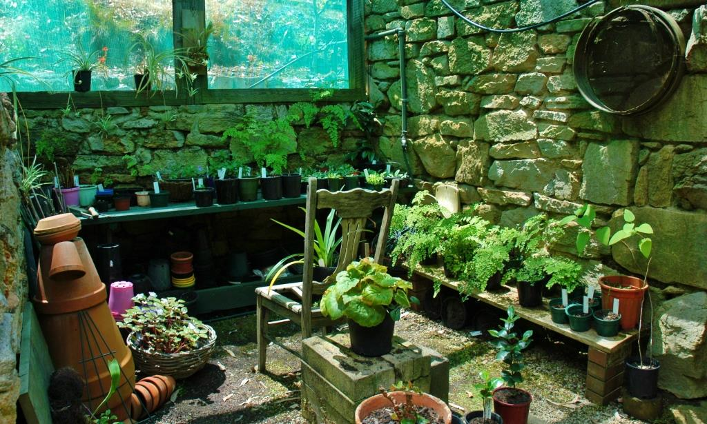 Potting Shed Musings Header Web