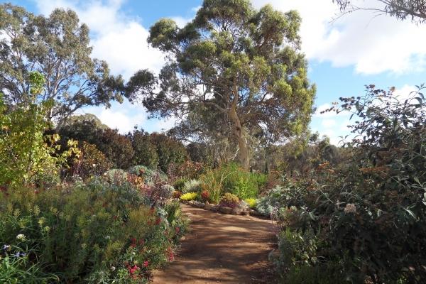 highcroft-garden-harrogateB67D624E-E13B-84D6-42AA-D9798D7EE59E.jpg