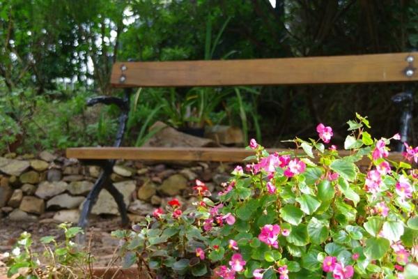 looking-glass-garden-marinoA358AB14-1F90-F355-B3A5-1C3365A88B5B.jpg