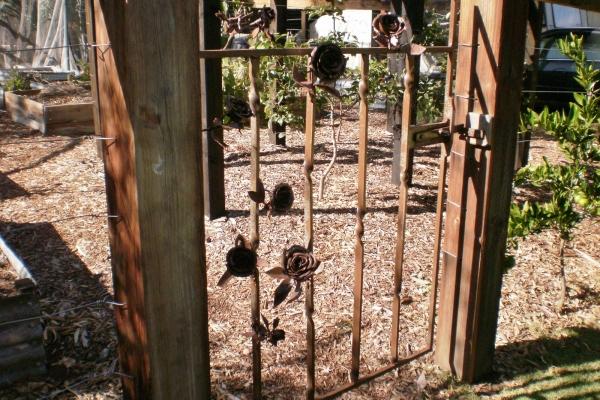 rosie-mick-s-garden-springton8655E544-4C19-AA98-0217-CD133116F63F.jpg