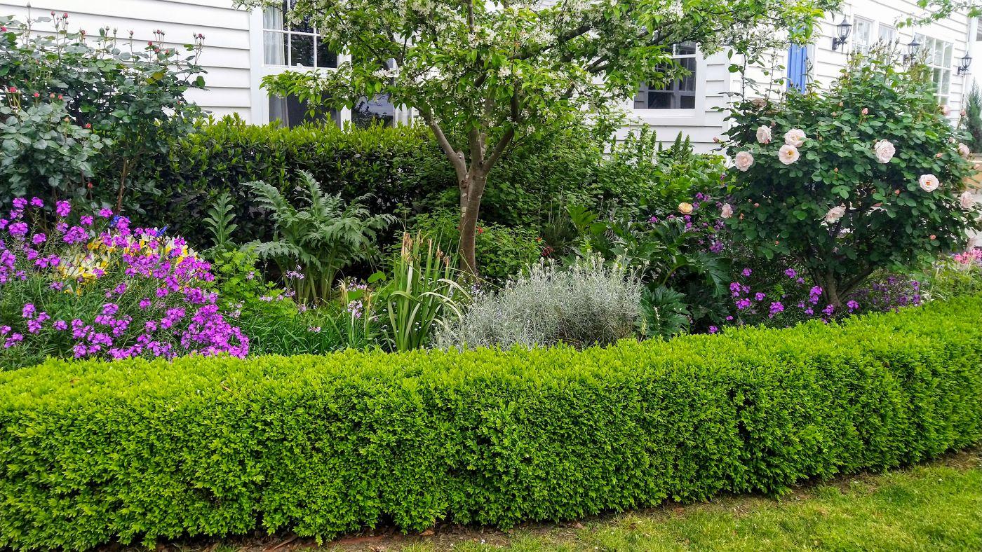 Doole_Garden_16_x_9_2_2021.jpg