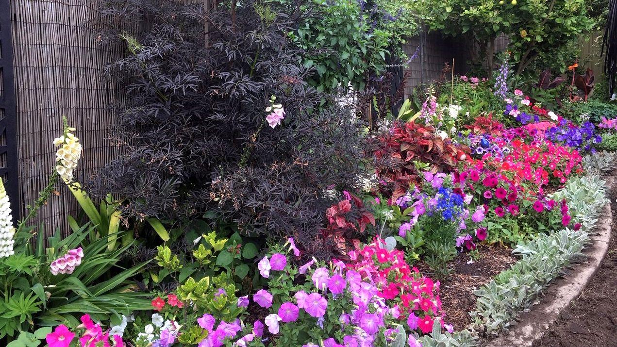 McPherson_Garden_16_x_9_4.jpg